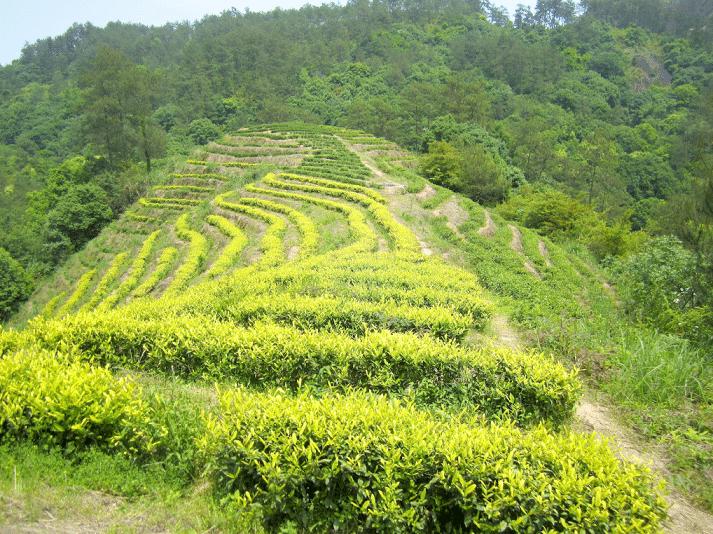 Bai Ji Guan