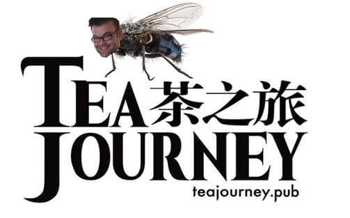 fly on tea journey's wall