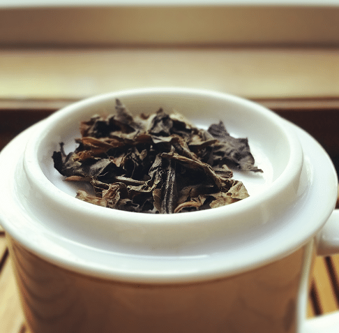 coffee-leaf-tea-may-2016
