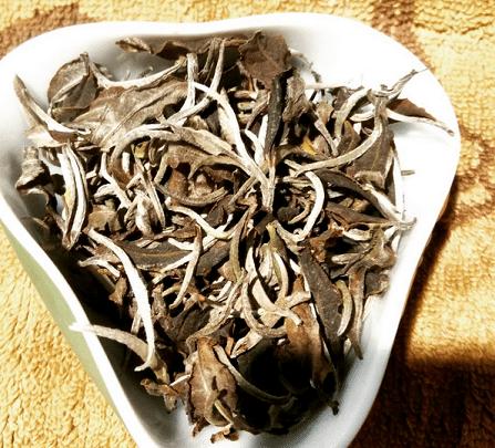 white-tea-from-laos
